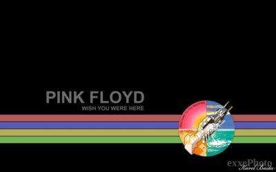 Wish You were here – Pink Floyd COVER
