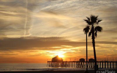 California dreaming – Mammas and Pappas COVER
